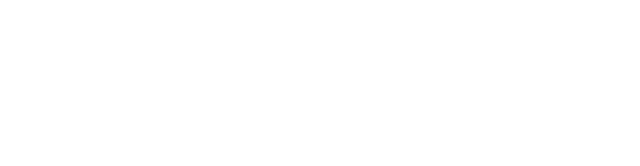 brus diamantu V3-8_png